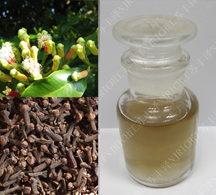 丁香叶油 Clove leaf oil INDONESIA
