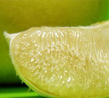 浓缩白西柚汁-以色列